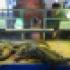 крокодилы тоже живут в Подмосковье